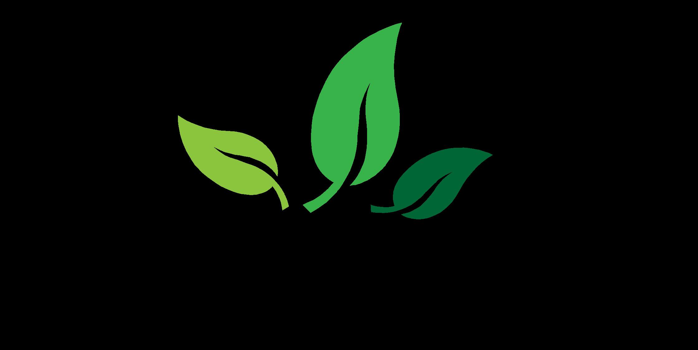 Pflanzenkohle Pur zum Wohle der Natur